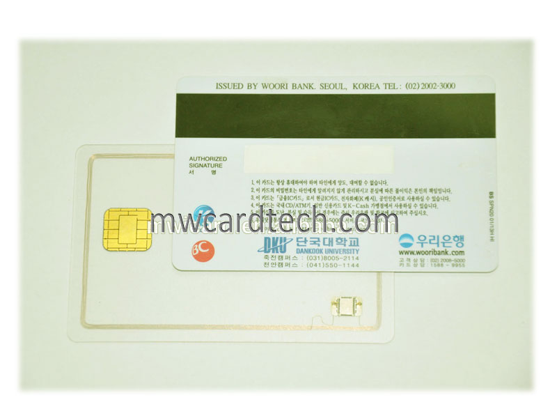 Chip and magnetic stripe card